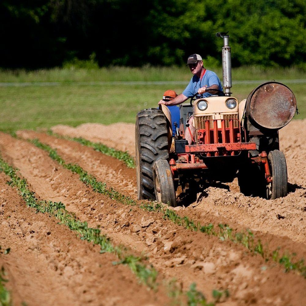 man-riding-red-tractor-on-field-2252618